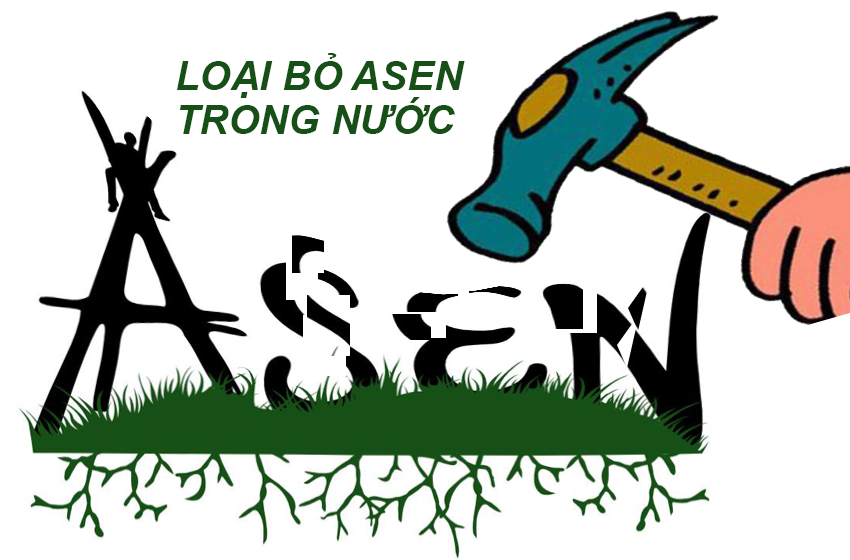 asen trong nuoc